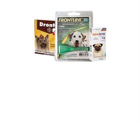 Medicamentos para Cães